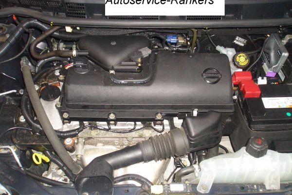 cimg26436A22490D-0B8A-C295-201D-EC8EF999CAAF.jpg