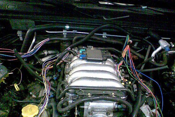 bild023360ED4A3-755F-9DF3-3501-5E98DC4E4AC5.jpg
