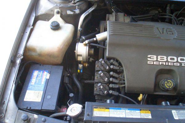 cimg3811E4E3E61B-56B7-0F05-55DC-C5DF09278350.jpg